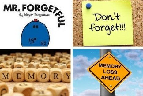 The case of .....having a memory like a sieve  but twice as leaky | memoir writing | Scoop.it