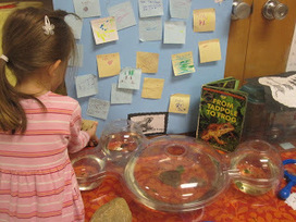Inquiry-Based Learning: Writing in Kindergarten | Writing ideas | Scoop.it