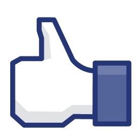 Facebook Durum Beğendirme   Havlayan Kirpi   Scoop.it