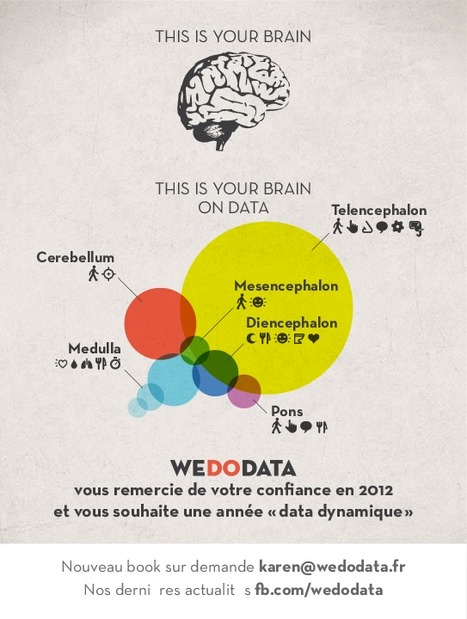 "WeDoData ""This is your brain""… 