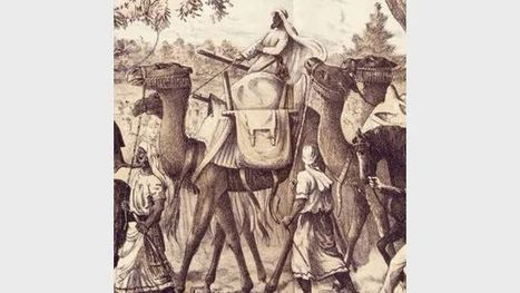 Culture Victoria - Burke and Wills: Have Camels Will Travel - FUSE - Department of Education & Training | Year 5 History: The Afghan Cameleers | Scoop.it