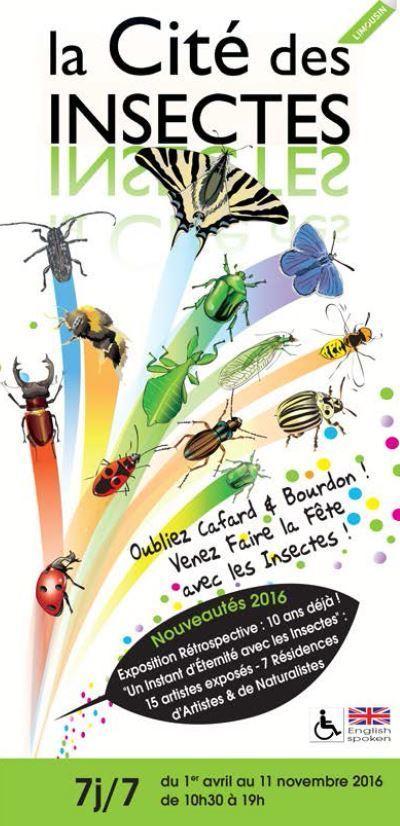 """[Expo] """"10 ans déjà ! Un instant d'éternité avec les insectes !"""" : Cité des Insectes à Nedde (87)   Variétés entomologiques   Scoop.it"""
