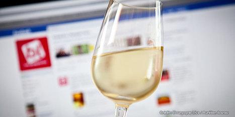 Le suisse Christophe Bonvin, ancien international de foot, lance une Cuvée Facebook ! | Tag 2D & Vins | Scoop.it