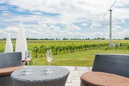 5 Great Ontario Whites to Enjoy on Your Patio | modern patio furniture | Scoop.it