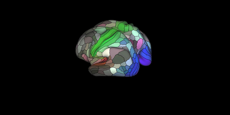 Scientists Complete the Most Detailed Map of the Brain Ever | Managing Technology and Talent for Learning & Innovation | Scoop.it