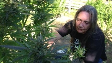 Medical marijuana licences no longer a home-grown option | cannabis | Scoop.it