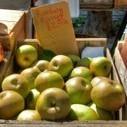 À NYC, des médecins prescrivent désormais des fruits et des légumes | Des 4 coins du monde | Scoop.it