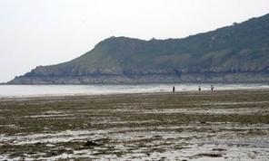 53.000 m3 d'algues vertes ramassées en Bretagne à la fin août   Biodiversité   Scoop.it