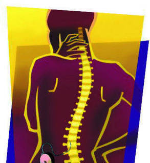 Doctor claims breakthrough in race for spinal 'cure' | Medical Tourism News | Scoop.it