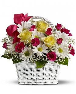 Flowering Plants - Green Thumb Gifts | Plants Online | Scoop.it