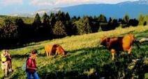 Le massif du Semnoz, une montagne aux multiples visages | Annecy | Scoop.it