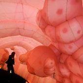 La flore intestinale joue avec notre mental | Galenus Regeneratio | Scoop.it