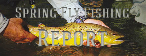 Taylor River | Fishing Report | Colorado | Crested Butte | Fly Fishing | Scoop.it