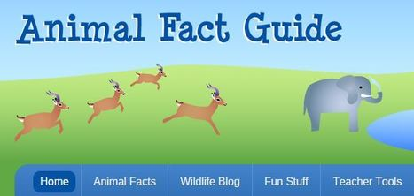 Animal Fact Guide for Kids #scichat #edchat | Education Matters - (tech and non-tech) | Scoop.it