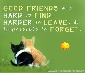 SMS Messages: Best Friend Quotes and Sayings | Best friend Wishes | Scoop.it