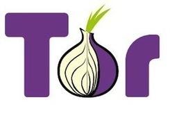 Les hackers du FBI infiltrent TOR pour piéger un réseau de pédopornographie | Gestion de l'information | Scoop.it