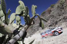 VW praises Hyundai efforts following podium on WRC Rally Mexico ... | HUB Hyundai Houston | Scoop.it