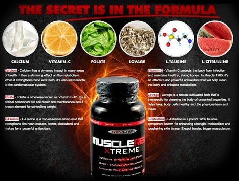 Muscle Rev Xtreme Review - GET FREE TRIAL SUPPLIES LIMITED!!! | How We Build Mussels With Supplements | Scoop.it