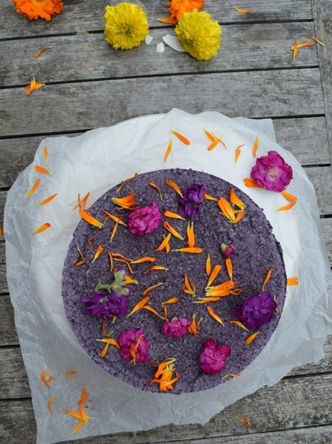 Blueberry and cacao birthday cake - raw and vegan | My Vegan recipes | Scoop.it
