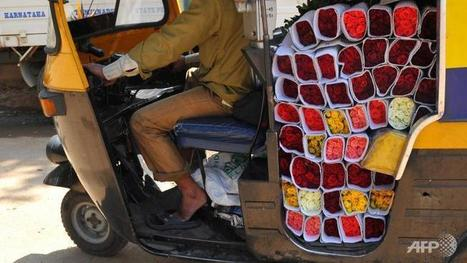 India's floriculture industry sees boom ahead of Valentine's Day - Channel News Asia | Floriculture in India | Scoop.it