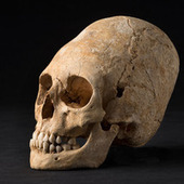 Conehead Skull Found in Multicultural Necropolis - WebProNews | Neolithic | Scoop.it