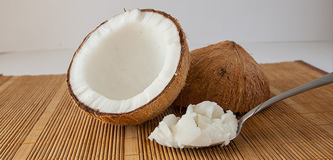 Bodybuilding.com - Coconut Oil: The Greatest Fat You've Never Tried | weight loss | Scoop.it