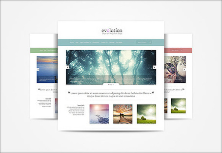 Evolution- Elegant Themes Blog | Premium Wordpress Themes | Scoop.it