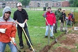 Edmonston Rain Garden, Maryland Sustainability Engineering, University of Maryland | A Gathering of Rain Gardens | Scoop.it