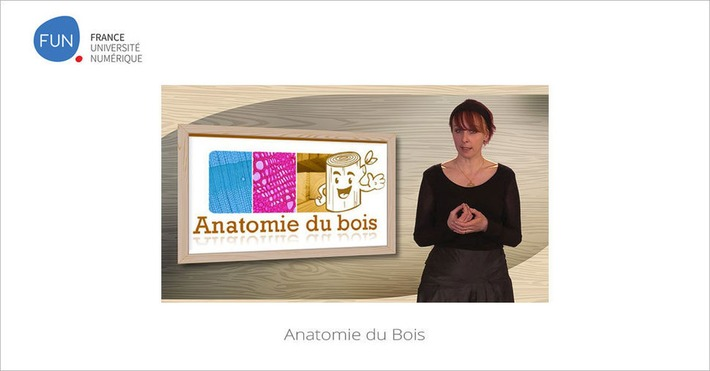 [Today] MOOC Anatomie du Bois | Solutions locales | Scoop.it