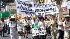 Les apiculteurs piqués au vif par les promesses non tenues du gouvernement - France 3 | Abeilles, intoxications et informations | Scoop.it