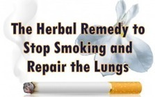 The Herbal Remedy to Kick the Smoking Habit & Repair the Lungs | Health, Beauty, Relationship | Scoop.it