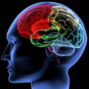 It's Not Personal, It's Strictly...A Brain Disease | Alcoholism and the Family | Scoop.it