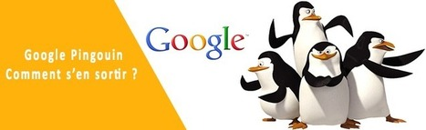 Google Pingouin : comment le surmonter ? | webmarketing BtoB | Scoop.it
