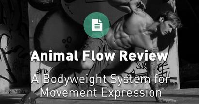 Animal Flow - A Bodyweight Training System. | SELF HEALTH | Scoop.it