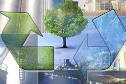 Expectativas sobre la Responsabilidad Ambiental Empresarial - De10.com.mx | responsabilidad ambiental | Scoop.it