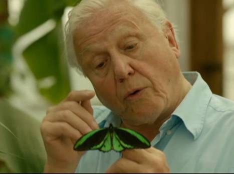 Attenborough's botanical ark? Which 10 plants would your students rescue? | Herbaria | Scoop.it
