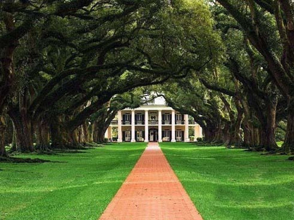 Oak Alley: Top 10 Great Honeymoon Places | Oak Alley Plantation: Things to see! | Scoop.it