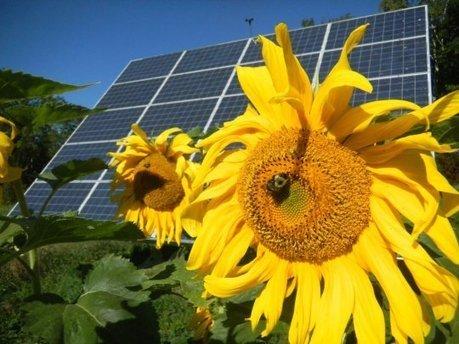 Des fournisseurs d'énergie publics, locaux, écolos et rentables... Mais interdits en France ! | Micro Grid | Scoop.it