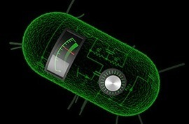 Principles of Synthetic Biology | SynBioFromLeukipposInstitute | Scoop.it