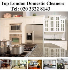 Domestic Cleaners London | Cleaning Company | Cleaning Services | Time For General Cleaning | Scoop.it