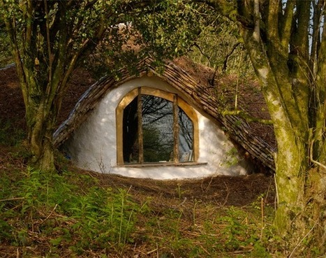 Home in the Forest | sustainable architecture | Scoop.it