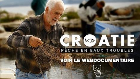 Webdocumentaire - Croatie : pêche en eaux troubles - RFI | Nouveaux formats | Scoop.it