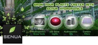 Indoor grow lights for Hydroponics plantation | Hydroponics Equipment | Scoop.it