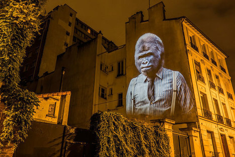 #Wild #Animals Take Over #Paris Buildings With Style #art #projection #photography #streetart | Luby Art | Scoop.it