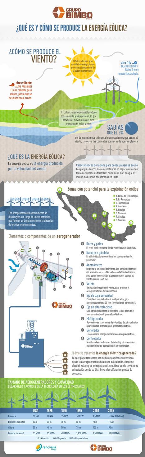 Grupo Bimbo |   ¿Qué es y cómo se produce la energía eólica? | Infraestructura Sostenible | Scoop.it