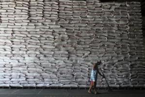 La production rizicole en Afrique progresse plus vite que sa demande | Questions de développement ... | Scoop.it