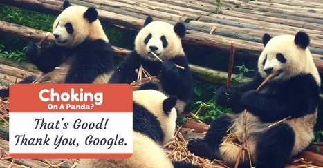 Google Panda is choking SEO to death, and it's actually a good thing - exploreB2B | St Louis SEO - SEO - Search Engine Optimization | Scoop.it