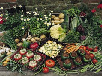 Urban Gardens Promote Healthy Eating in Food Deserts   Food issues   Scoop.it