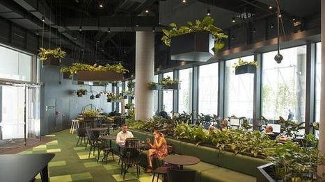 NABbuilds high-tech Village in Melbourne | Woods Bagot | Scoop.it