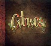 El prometedor debut de Cítrics | Novetats discogràfiques | Scoop.it
